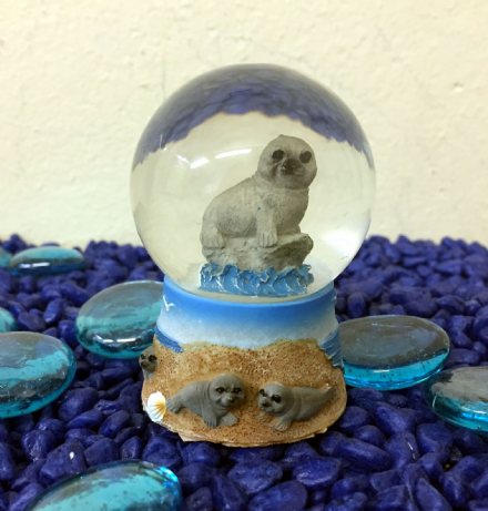 Sea Lion Glass Ocean Snow globe ~  A